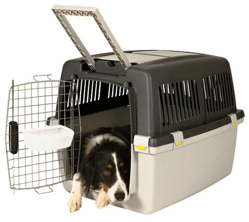 Airline dog travel kennels